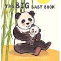Big Baby Book cover