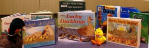 Heide Piehler, Youth Service Librarian, shares one of April's R.O.W. titles Lucky Ducklings by Eva Moore during the Shorewood Public Library Preschool Story Time.
